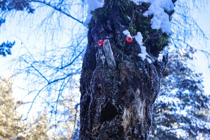 Kierowniczy lasowy drewniany czarodziejski potwór zdjęcia royalty free