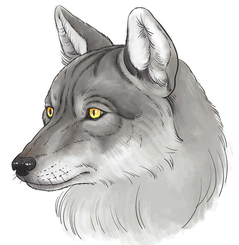 kierowniczy wilk ilustracja wektor