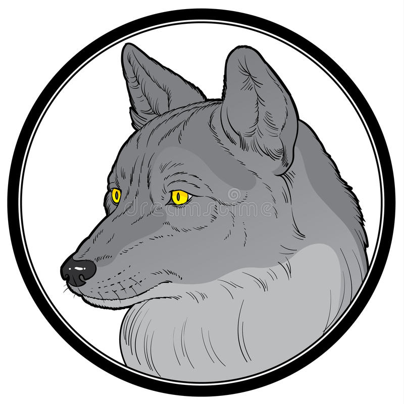 kierowniczy wilk ilustracji