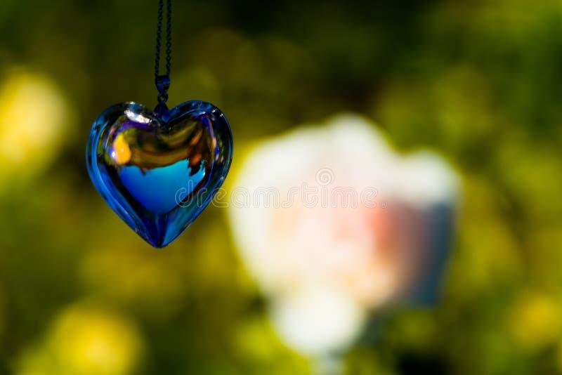 Kierowy krystaliczny szkło refract światło słoneczne - ogródu różanego tło zdjęcie stock