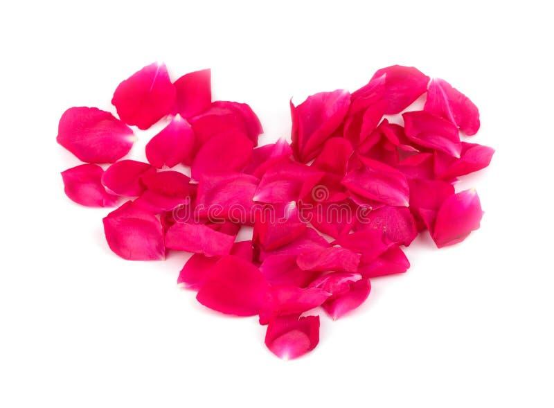 Kierowy kształt robić różani płatki w jaskrawej czerwieni zdjęcia stock
