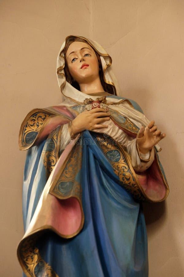 kierowy niepokalany Mary zdjęcie stock
