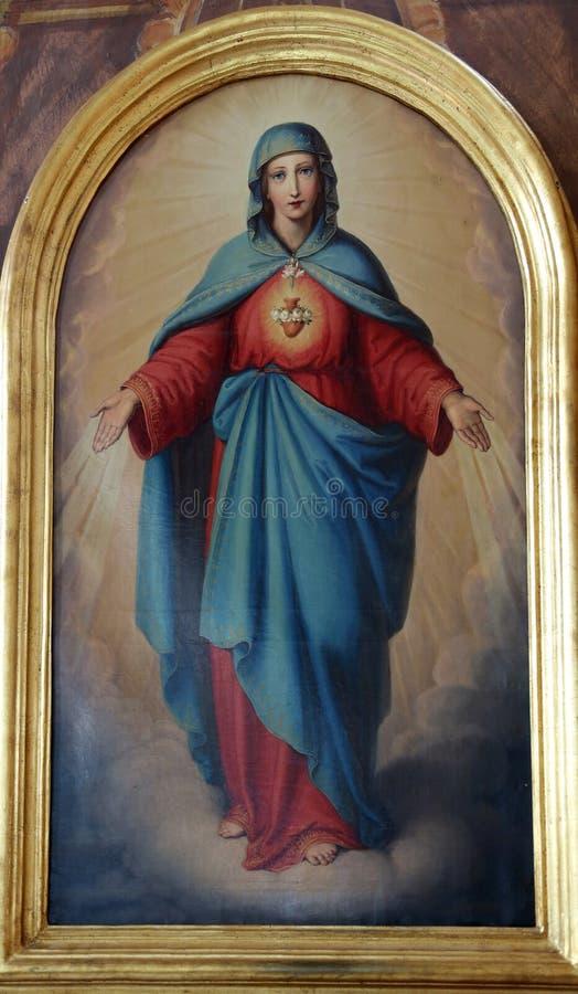 kierowy niepokalany Mary obraz stock