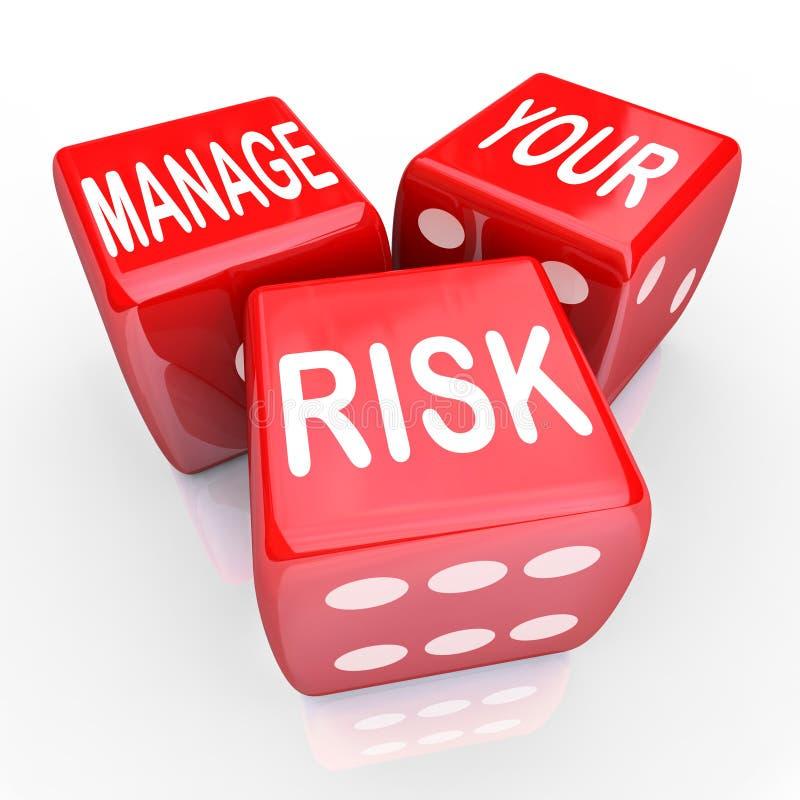 Kieruje Twój ryzyko słowa kostka do gry Zmniejszają koszt odpowiedzialność ilustracja wektor