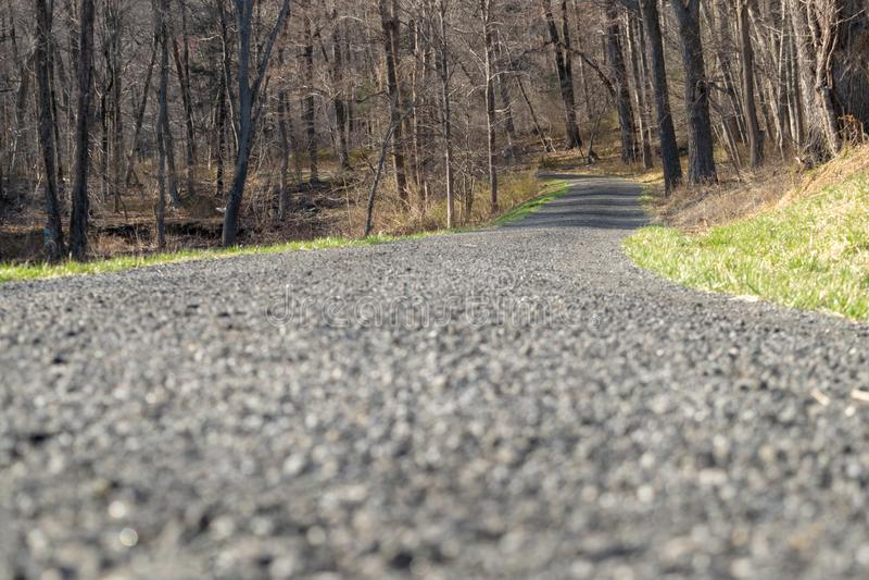 Kies bedeckter Weg, der in den Abstand, in ein blattloses forrest, an einem sonnigen Tag führt stockfotografie