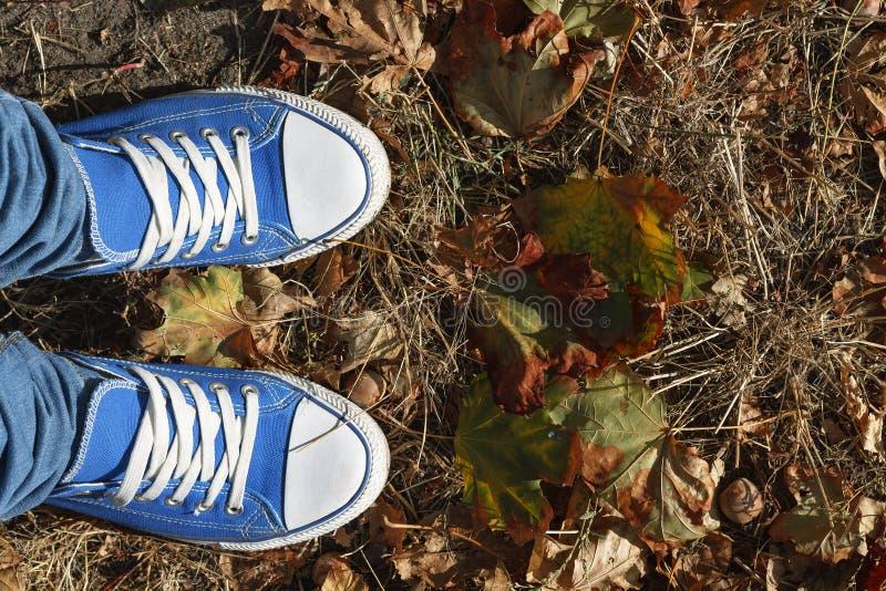 Kies het beste conceptuele beeld die van A het tiener` s probleem in de het levenskeuzen illustreren Benen in blauwe tennisschoen stock afbeelding