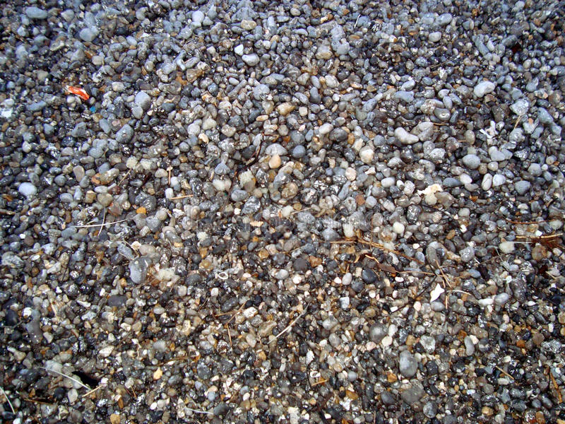 Kiesel auf dem Strand stockbild