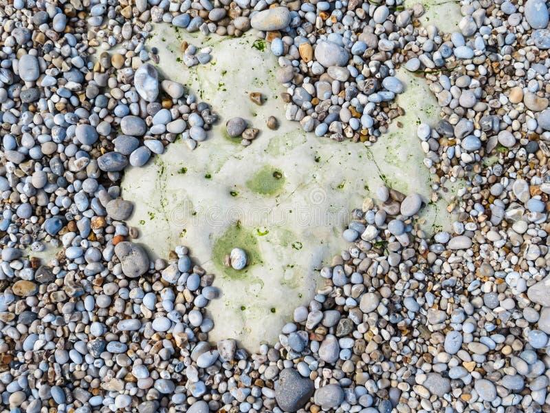 Kiesel auf einem Strand als Hintergrund stockbild