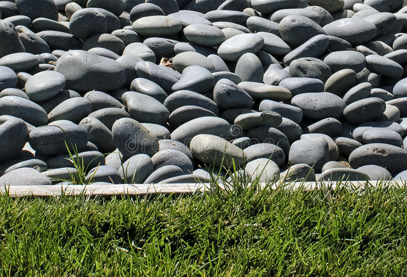 Kiesel und Gras stockfoto
