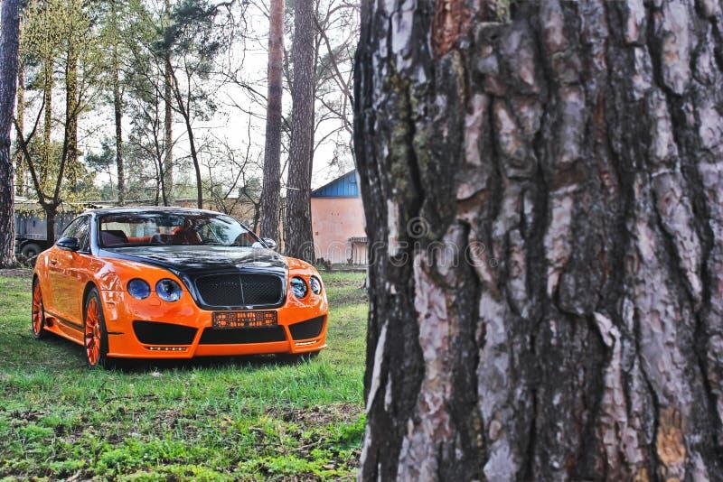 Kiev, de Oekraïne; 10 april, 2015 Het Ras Mansory van Bentley Continental GT in het bos stock foto's