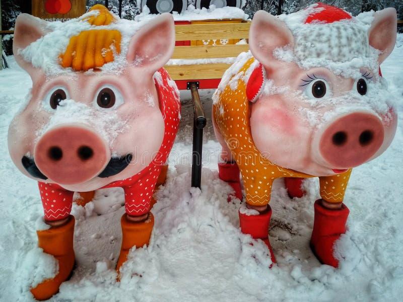 KIEV, de OEKRAÏNE - December 12, 2018: beeldjes van varkens in een de winterpark Het symbool van nieuwe 20 royalty-vrije stock foto's
