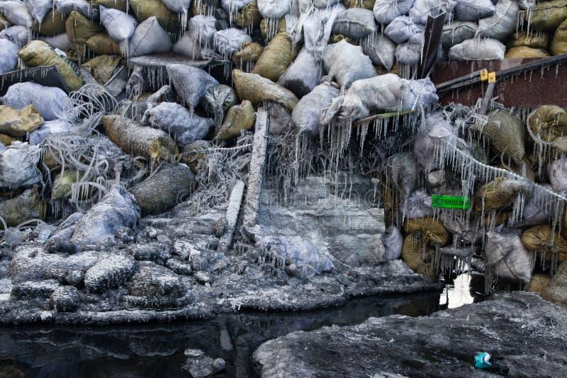KIEV, UCRÂNIA - 26 de janeiro de 2014: Protestos antigovernamentais maciços fotos de stock