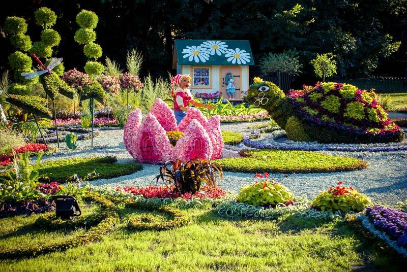 KIEV, UCRANIA - 22 DE AGOSTO: exposición de la flor fotos de archivo libres de regalías