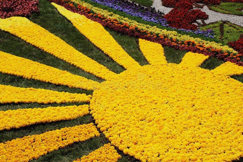 KIEV, UCRANIA - 23 DE AGOSTO: exposición de la flor en Kiev, Ucrania foto de archivo