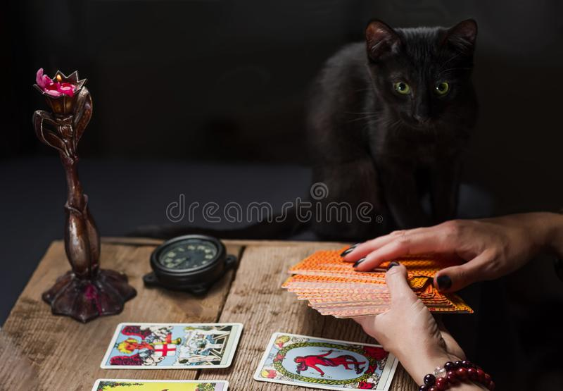 The fortune teller lays out on a wooden table the tarot cards by the light of a candle. Black cat sitting near the table royalty free stock photos