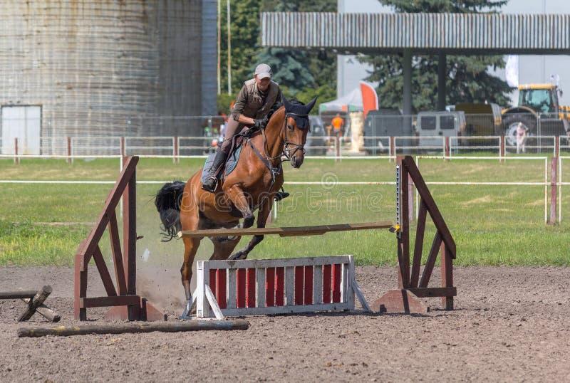 Kiev, Ukraine - June 09, 2016: Girl riding a horse knocks down the barrier. During training Jumping stock photo