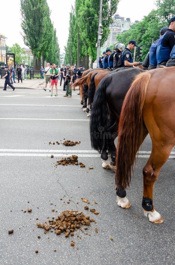 Kiew, Ukraine - 23. Juni 2019 März der Gleichheit LGBT-Marsch KyivPride Homosexuelle Parade Berittene Polizei auf dem Marsch lizenzfreie stockfotografie
