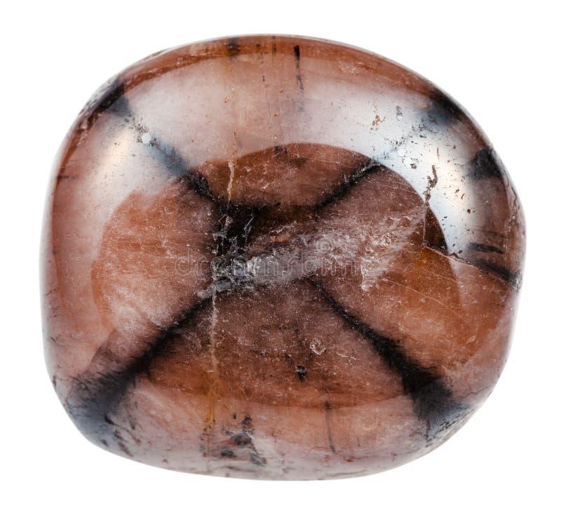 Kiezelsteen van Chiastolite-Andalusietsteen royalty-vrije stock fotografie