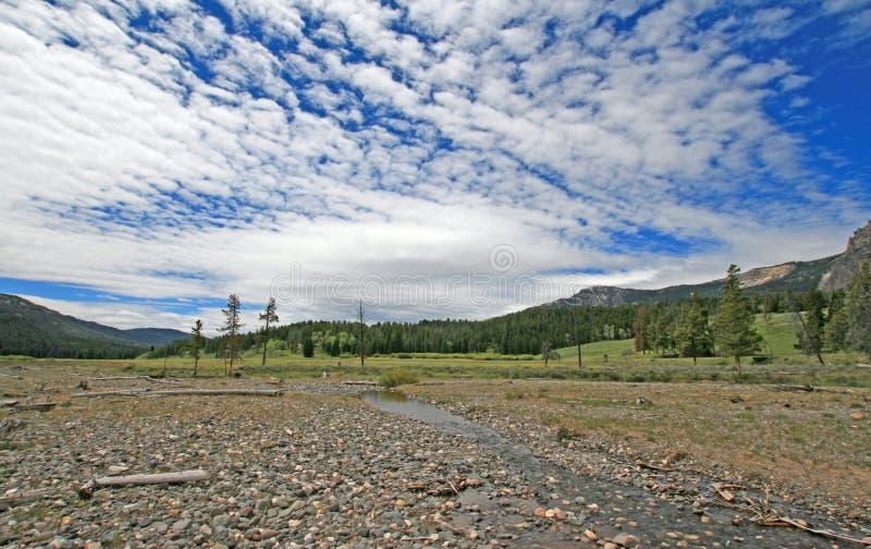Kiezelsteenkreek onder de hemel van de cumuluswolk op het eind van het oosten van Lamar Valley in het Nationale Park van Yellowst royalty-vrije stock afbeelding