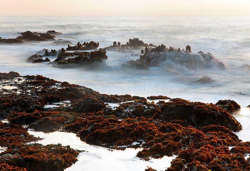 Kiezelsteenstrand of Bean Hollow State Beach, Pescadero, CA stock foto's