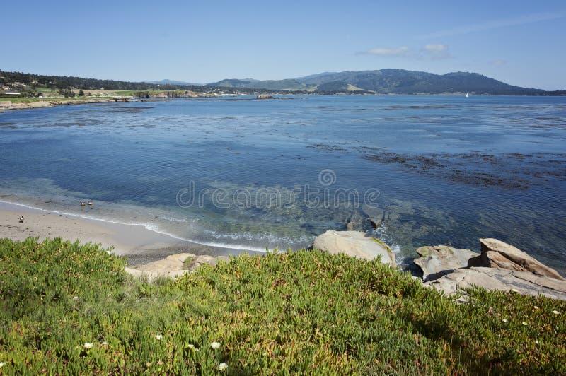 Kiezelsteenstrand langs de Monterey-Baai royalty-vrije stock fotografie