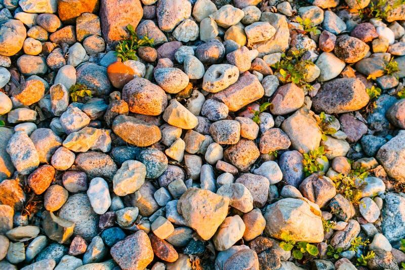 Kiezelstenen die op kust in helder zonlicht liggen De textuur van de steen stock afbeeldingen