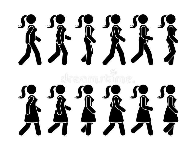 Kij postaci chodzącej kobiety ikony wektorowy piktogram Grupa kobiety sekwencji poruszający set naprzód royalty ilustracja