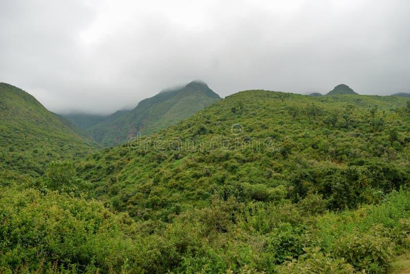 Kijabe wzgórza w kikuju Escarpment, Kenja fotografia royalty free