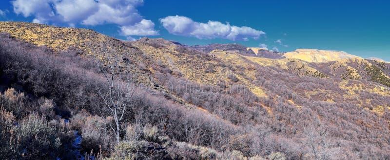 Kijken naar de Rocky Mountains van Wasatch Front vanuit het Oquirrh-gebergte met valbladeren, wandelen in de Yellow Fork-baan en  stock foto
