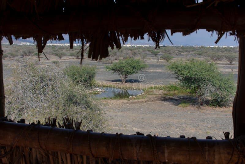 Kijkend door de het wild en vogelobservatietoren of blind in de woestijn van de Verenigde Arabische Emiraten uit aan de weide, r stock fotografie