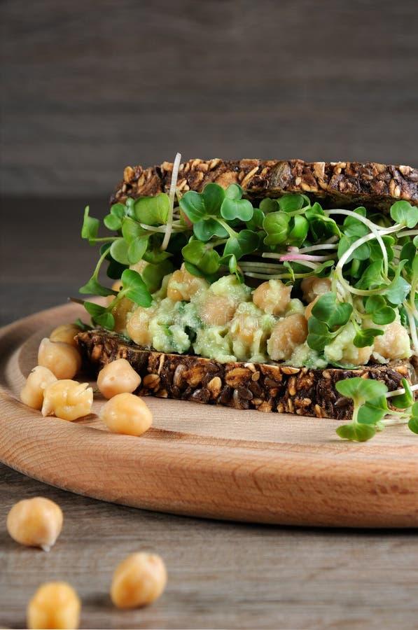Kikärtavokadosmörgås med rädisagroddar arkivbild