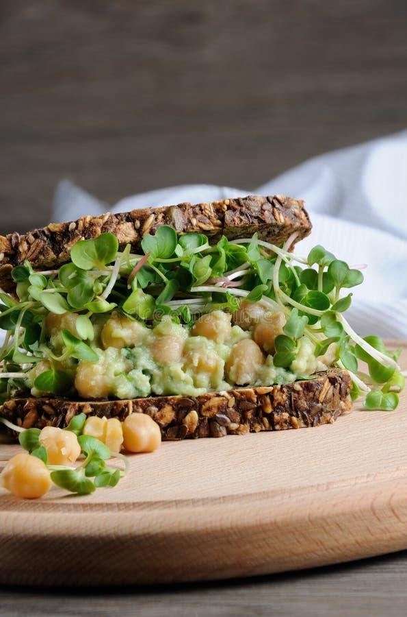 Kikärtavokadosmörgås med rädisagroddar arkivbilder