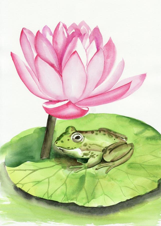 Kikker en lotusbloem stock illustratie