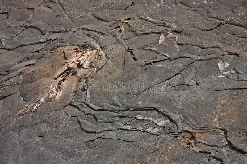 Kilauea Iki Crater Floor. Kilauea Iki Crater in Hawaii Volcanoes National Park royalty free stock image