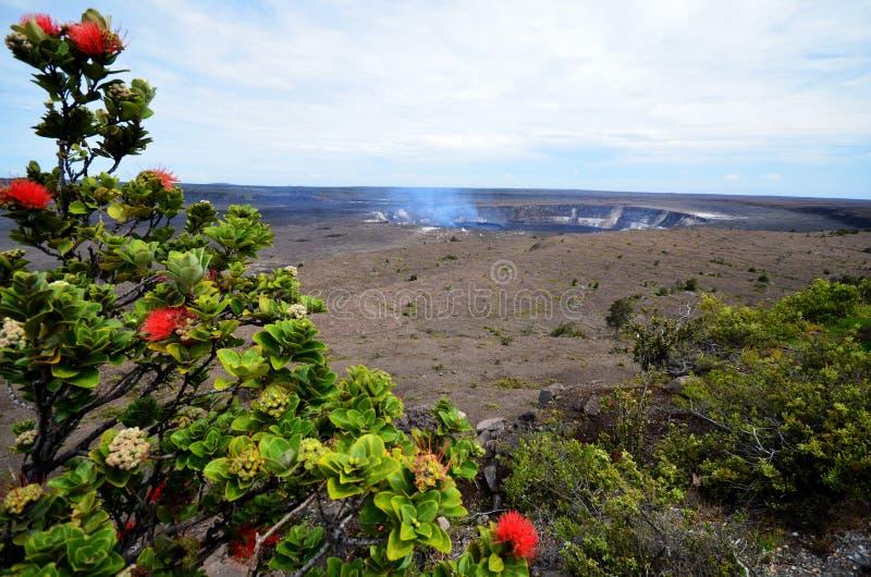 Kilauea Volcano Hawaii royalty-vrije stock afbeelding