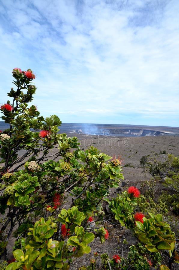 Kilauea Volcano Hawaii photos stock