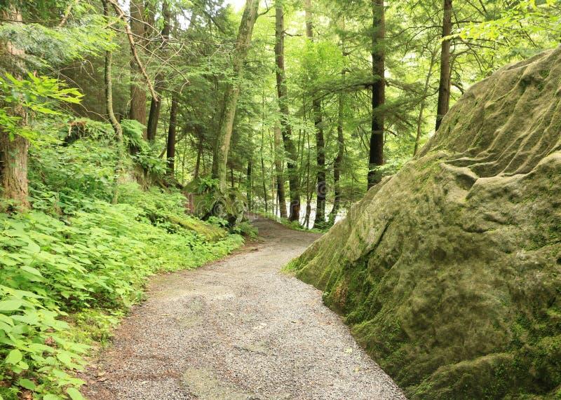 Kildo-Spur - McConnells-Mühlnationalpark - Portersville, Pennsylvania lizenzfreie stockbilder