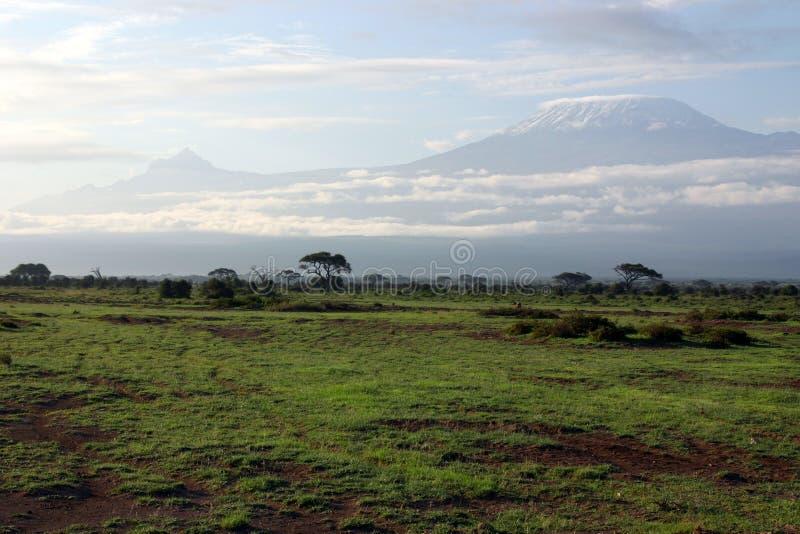 A Kilimanjaro imagens de stock