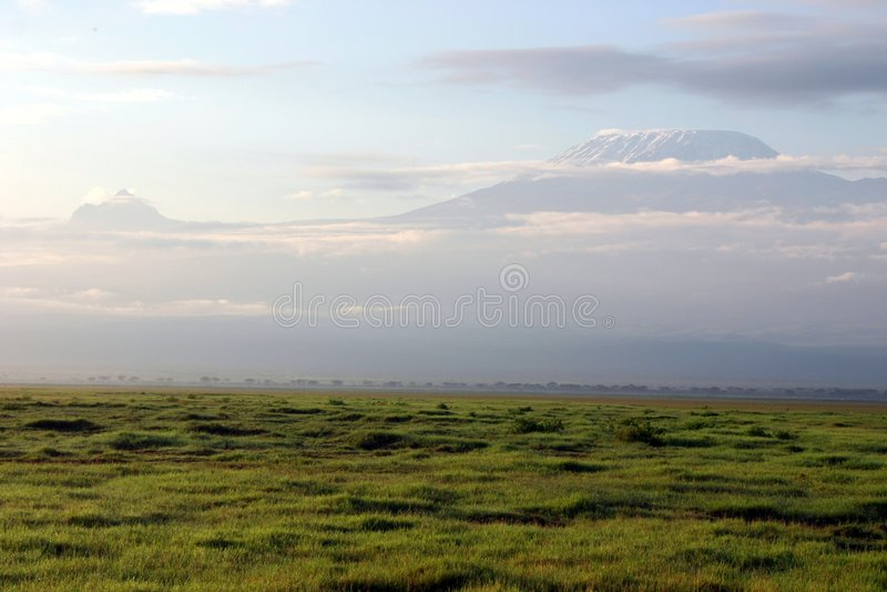 Kilimanjaro fotos de stock