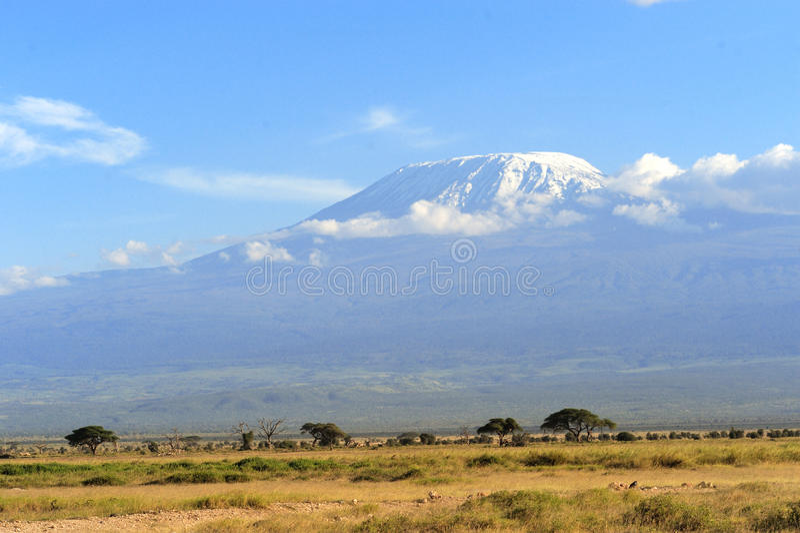 Download Kilimanjaro стоковое изображение. изображение насчитывающей кения - 40583735