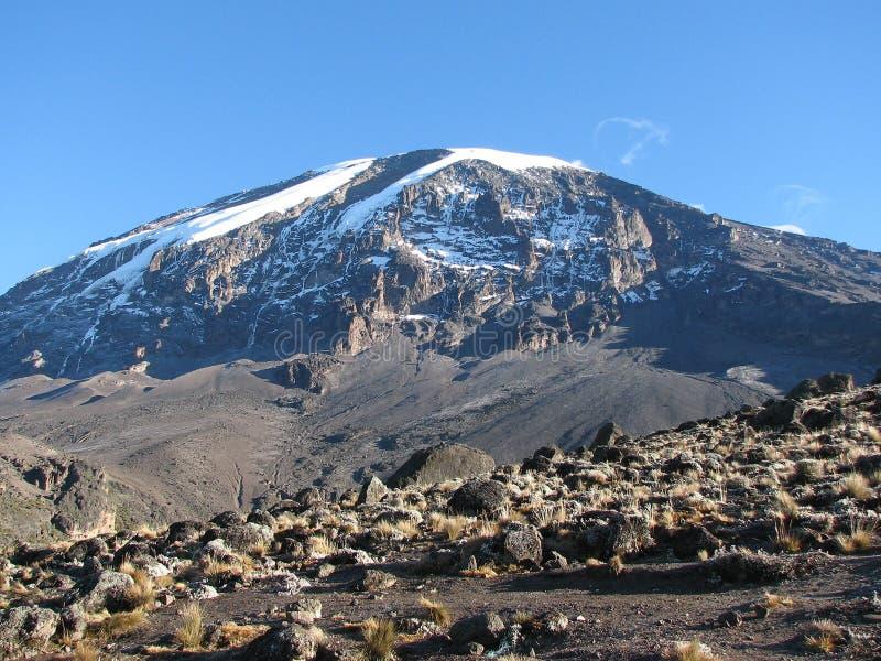 kilimanjaro 库存图片