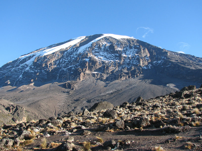 Kilimanjaro stockbild