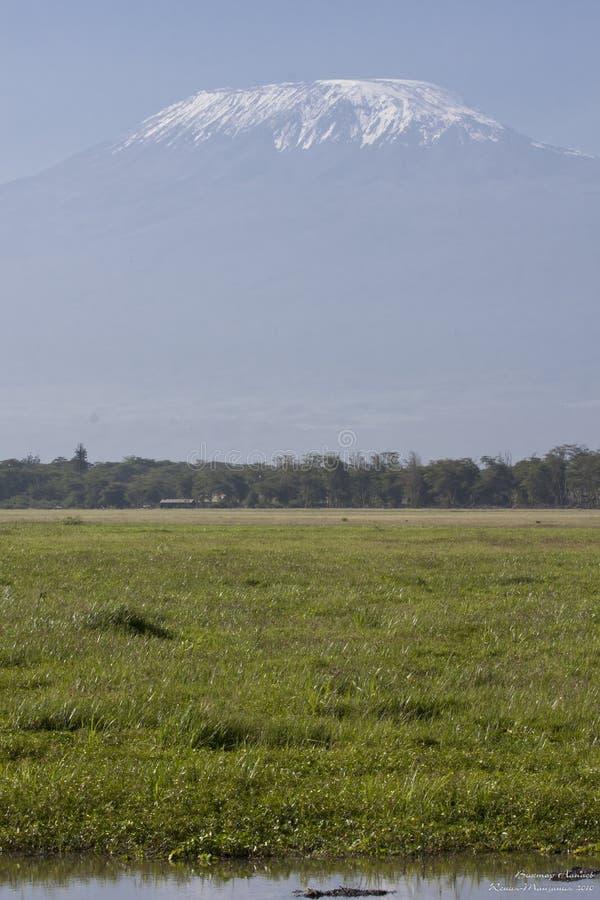 kilimanjaro Crête de Milou photo libre de droits