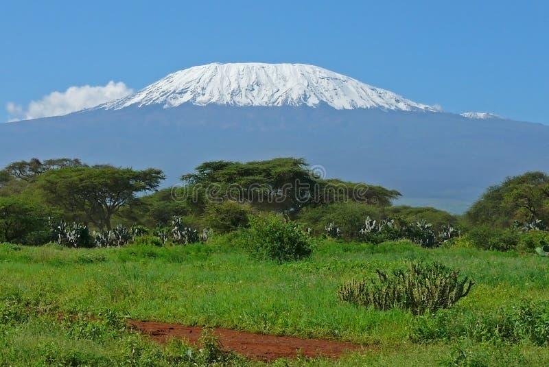 Kilimanjaro en Kenia imagenes de archivo