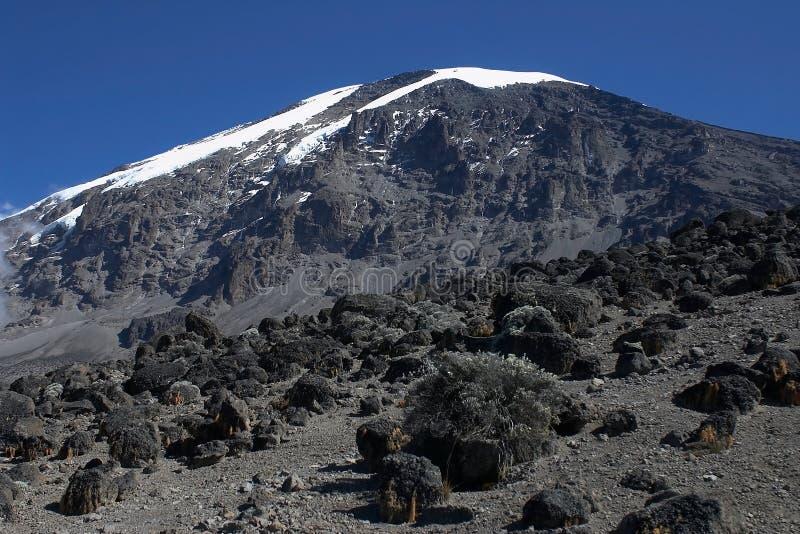 kilimanjaro mt Африки стоковая фотография rf