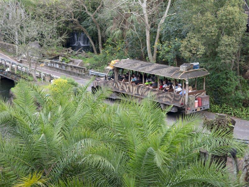 Kilimanjaro safari, Disney World, Zwierzęcy królestwo, podróż fotografia stock