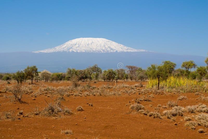 Kilimanjaroberg stock afbeelding