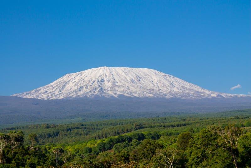 Kilimanjaroberg in Tanzania, Afrika stock fotografie