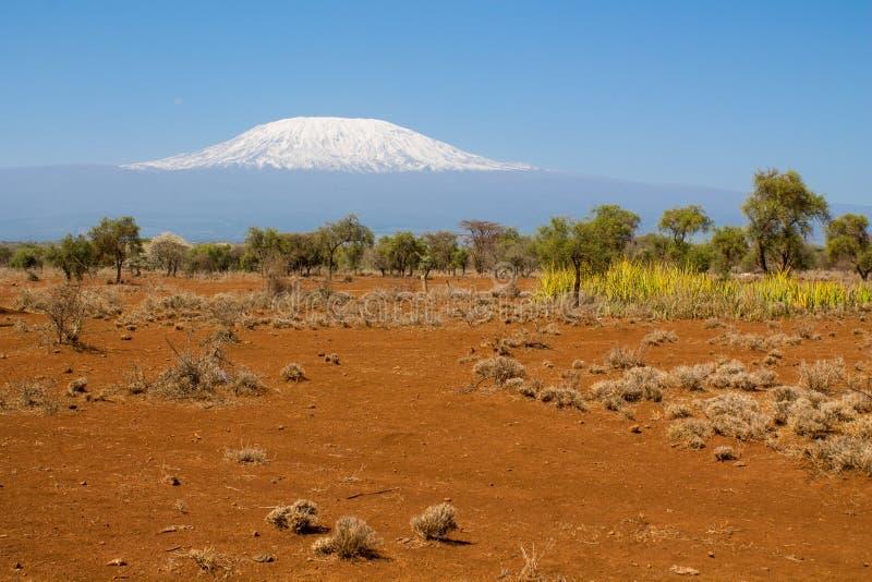 Kilimanjarolandschap stock afbeeldingen