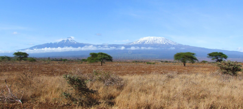kilimanjaroliggande royaltyfri fotografi